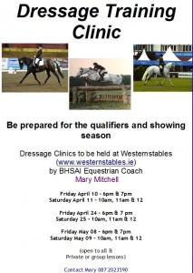 Dressage Clinic revised