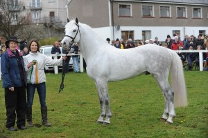 MAS_4590-Lough Fadda Rudi