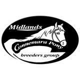 A Day out with the Midlands Connemara Pony Breeders Group
